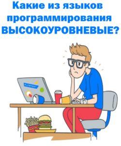 Языки программирования высокого уровня